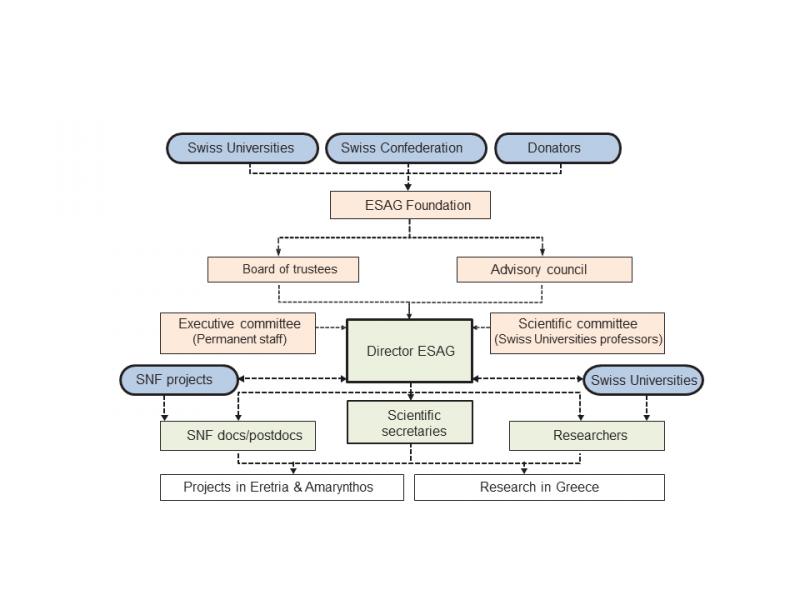 Organisation of ESAG